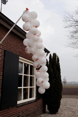 NL-Doet 17-3-2012 - 011
